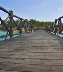 businesses_landing_page_top_left_wooden_bridge_lower_resolution_shutterstock_27049912
